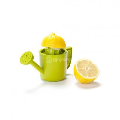 Shtrydhese Limoni